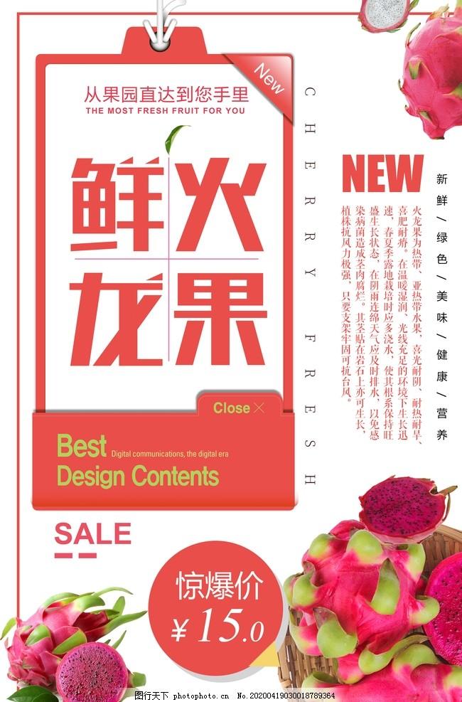 白色简洁大气火龙果水果海报,水果广告,新鲜水海报,水果店,有机水果海报,绿色食品海报,蔬果海报