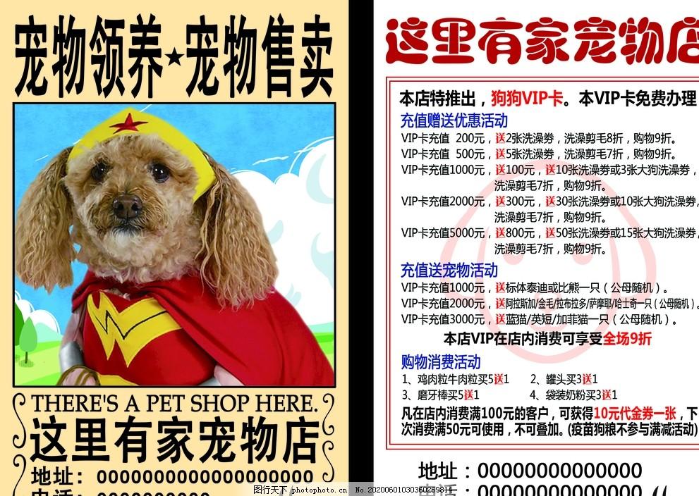 寵物店彩頁海賊王通緝令風格創意,狗,設計,廣告設計,DM宣傳單,300DPI,PSD