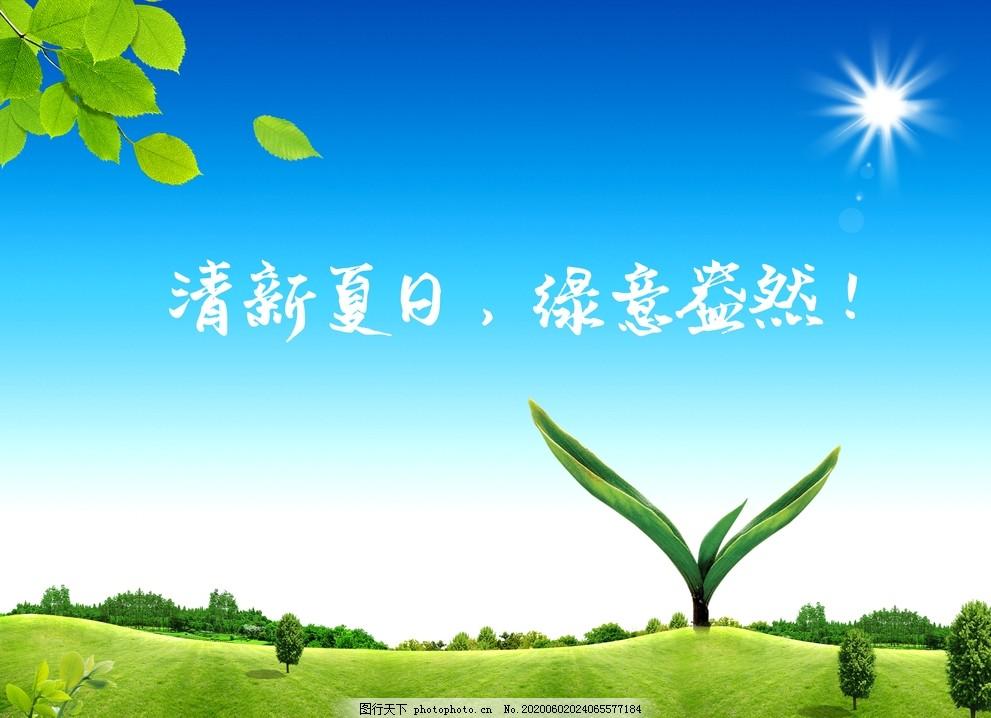 清新自然,夏日,绿草,绿地,草地,树叶,嫩芽